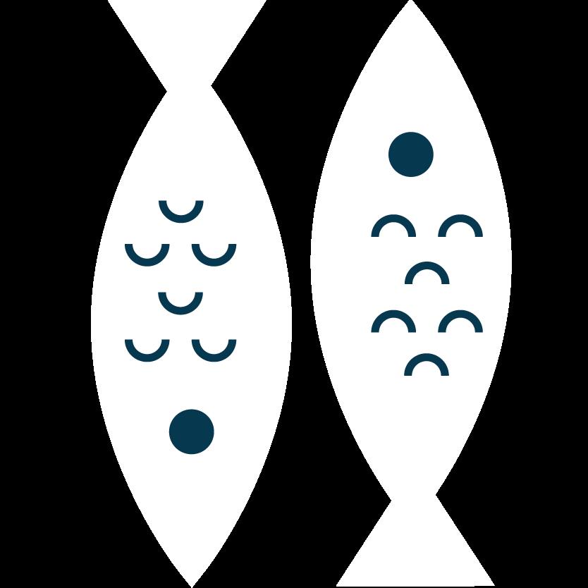 pesci VRM